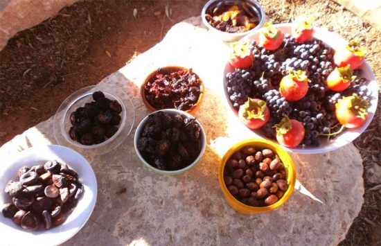 repas-de-fruits